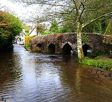 Packhorse Bridge nr Skilgate by Rob Hawkins