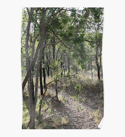 Aussie Bush Hiking Track Poster