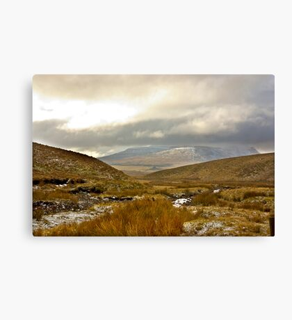 Winter in The Dales Canvas Print
