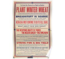 United States Department of Agriculture Poster 0237 Plant Winter Wheat Breadstuff is Scarce Poster