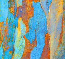 Winter Eucalypt Abstract 2 by Margaret Saheed