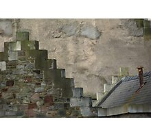 crow steps  Photographic Print