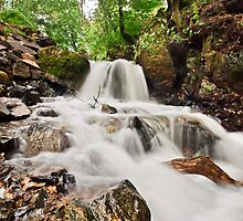 Tarn Hows Falls by James Grant