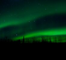Ft Nelson BC Auroras..Nov 13th/10 by peaceofthenorth