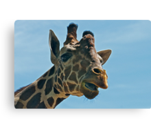 Giraffe SAYING Hello Canvas Print