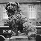 Edinburgh's Bobby. by emanon