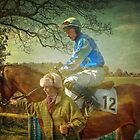 Point to Point  by Catherine Hamilton-Veal  ©