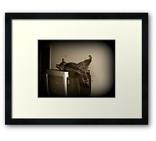 Some stretching Framed Print