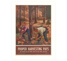 United States Department of Agriculture Poster 0162 Proper Harvesting Pays Sell Crooked Low Value Trees for Ties Posts Fuel Art Print