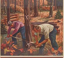United States Department of Agriculture Poster 0162 Proper Harvesting Pays Sell Crooked Low Value Trees for Ties Posts Fuel by wetdryvac