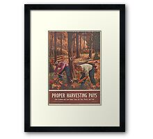 United States Department of Agriculture Poster 0162 Proper Harvesting Pays Sell Crooked Low Value Trees for Ties Posts Fuel Framed Print