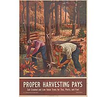 United States Department of Agriculture Poster 0162 Proper Harvesting Pays Sell Crooked Low Value Trees for Ties Posts Fuel Photographic Print