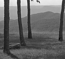 Blue Ridge Mountains - Virginia by Frank Romeo