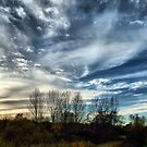 November Skyscape - Buckinghamshire, England by Nick Bland