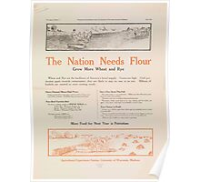 United States Department of Agriculture Poster 0283 The Nation Needs Flour Grow More Wheat and Rye Poster