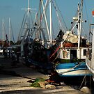 Skiathos Harbour  by larry flewers
