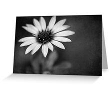 simply daisy Greeting Card