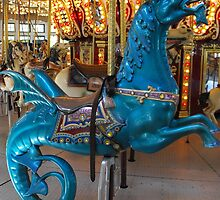 Hippocampus carousel ride by iheartrhody