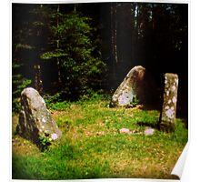 tlo 009 - les pierres magiques Poster