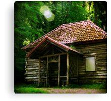 tlo 015 - la maison Canvas Print