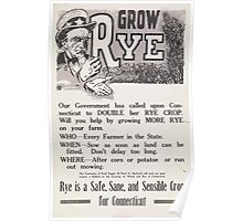 United States Department of Agriculture Poster 0204 Grow Rye Safe Sane Sensible Crop Poster