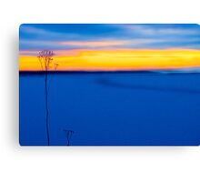 Guardians By The Sea Canvas Print