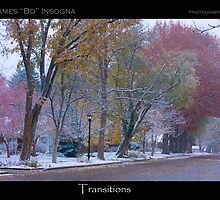 Autumn Turns to Winter Transitions Poster Print by Bo Insogna