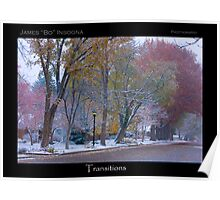 Autumn Turns to Winter Transitions Poster Print Poster