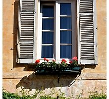 window by kippis