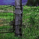 Wooden fence post by Kiwikels
