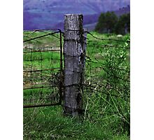 Wooden fence post Photographic Print
