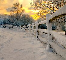 Sunrise at Ditchling in the snow by Eddie Howland