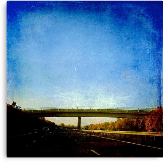 The Bridge by Brian Damage