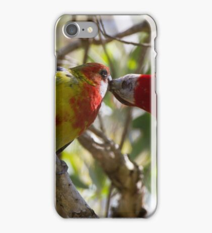 Feeding The Young  iPhone Case/Skin
