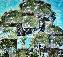Manuka cubed. by Lynne Haselden