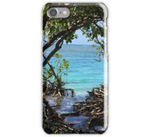 Caribbean mangroves iPhone Case/Skin