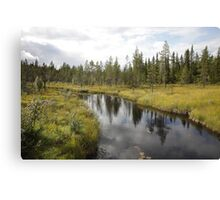 River in northern Sweden Canvas Print