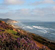 Del Mar, California by Jill Wright