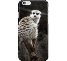 Animals VI iPhone Case/Skin