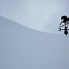 Winter Weathervane by pmreed