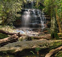 Junction Falls by Terry Everson