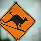 Skiing Kangaroo by Kym Howard