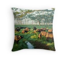 Buffaloes at Sunrise - Lake Nakuru, Kenya Throw Pillow