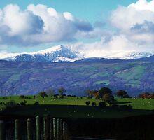 Snowdon, The Mountain by artfulvistas
