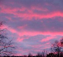 A Beautiful October Night Sky by vigor