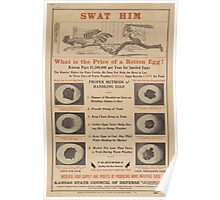 United States Department of Agriculture Poster 0317 Swat Him Fetile Rotten Eggs Poster
