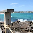 Coastal Walk, Bondi NSW by YellowGecko