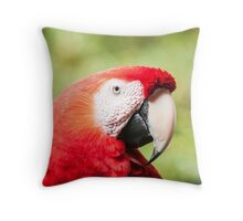 Frankly Scarlet Throw Pillow