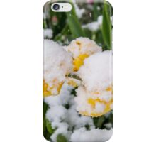Canadian Springtime  iPhone Case/Skin