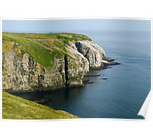 Gannets at Cape Saint Mary's - Newfoundland Poster